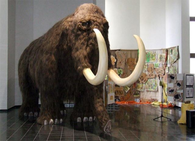 mamut-kyscue-kysucke-muzeum-2009-2.jpg
