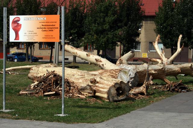 medzinarodne-socharske-sympozium-cadca-2008-1.jpg