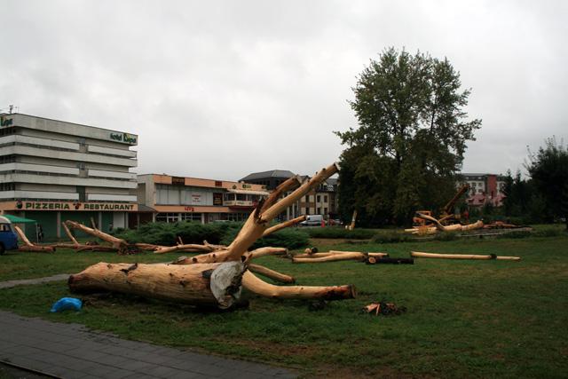 medzinarodne-socharske-sympozium-cadca-2008-2.jpg