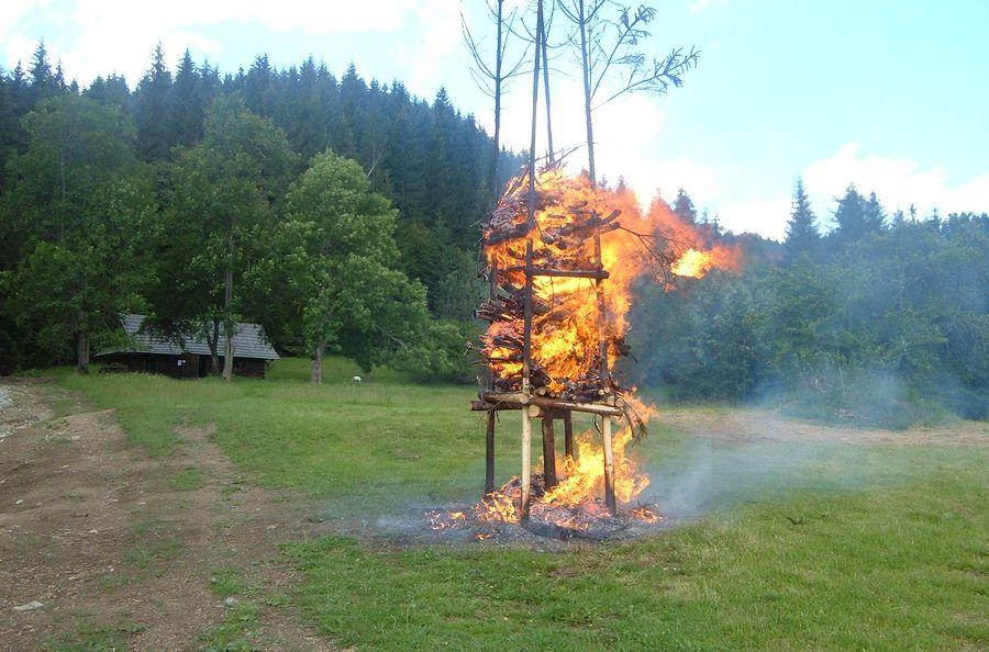 na-jana-zapalenie-hojany.jpg