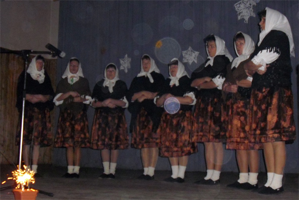 nova-bystrica-besiedka-2009-3.jpg