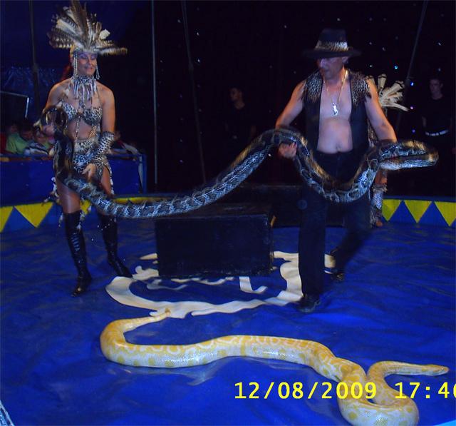 nova-bystrica-cirkus-keller-11.jpg