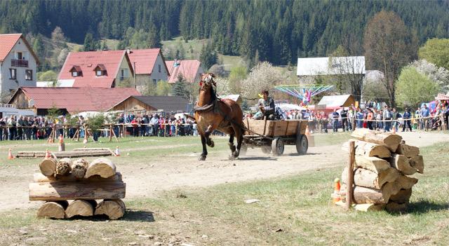 preteky-furmanov-nova-bystrica-2009-8.jpg