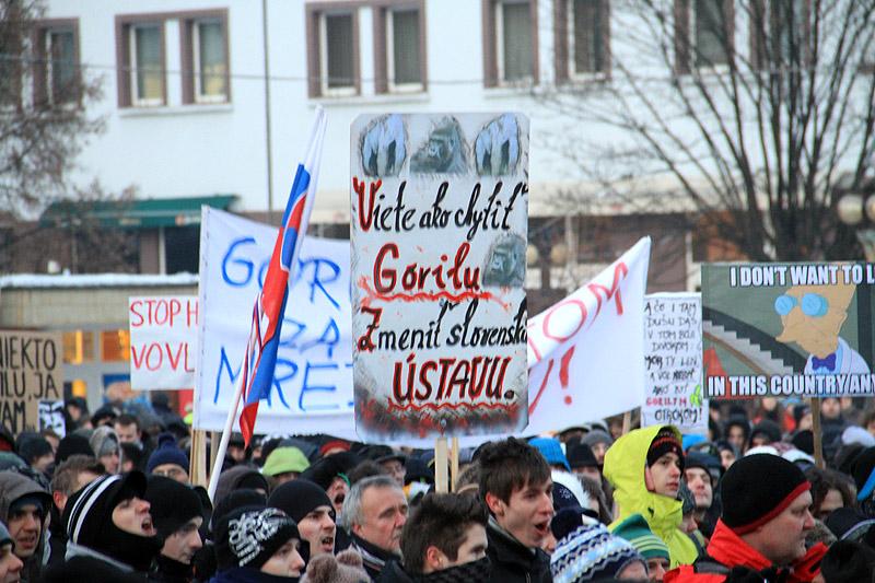protest-gorila-v-zilina-2012-3.jpg