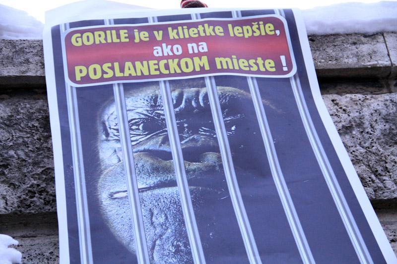 protest-gorila-v-zilina-2012-5.jpg