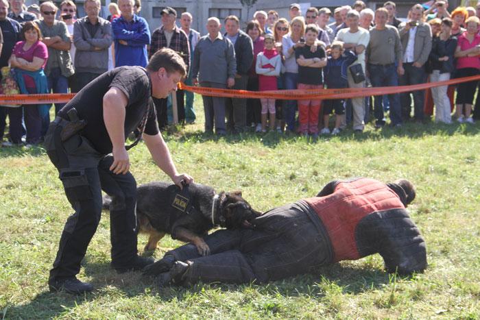 sutaz-vo-vareni-gulasu-2011-knm-31.jpg