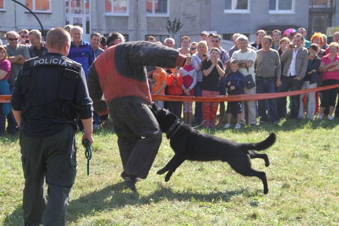 sutaz-vo-vareni-gulasu-2011-knm-34.jpg