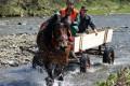 preteky-furmanov-nova-bystrica-2009-3.jpg
