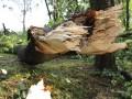 silna-burka-prietrz-mracien-cadca-2011-sc-30.jpg