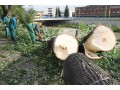silna-burka-prietrz-mracien-cadca-2011-sc-93.jpg