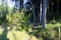 vojtovsky-mineralny-pramen-07-3.jpg