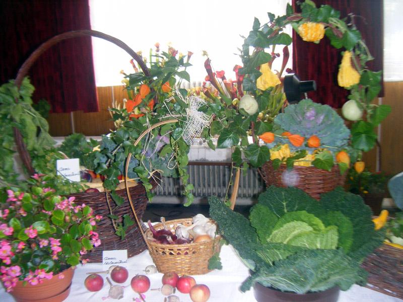 vystava-ovocia-zeleniny-2012-nova-bystrica-5.jpg