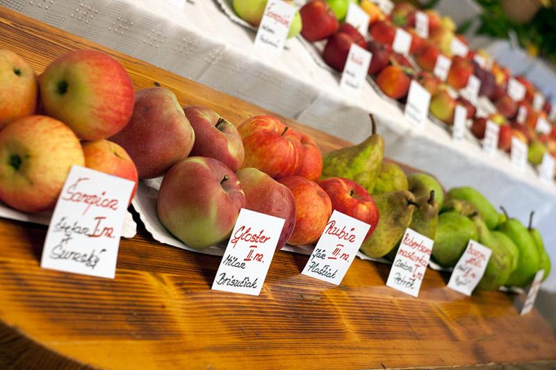 vystava-ovocia-zeleniny-2012-nova-bystrica-8.jpg