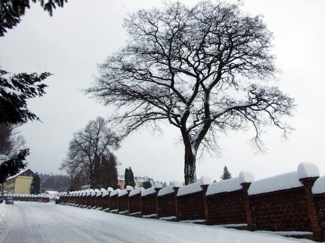 zima-kysuce-2009-27.jpg