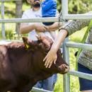 Chovateľský deň v Skanzene Vychylovka s národnou prezentačnou výstavou slovenských plemien hospodárskych zvierat