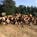 Na Semeteši vypukol rozsiahly požiar v prírode bojuje s ním 30 hasičov
