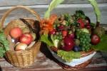 Vo Vychylovke pripravujú výstavu plodov z Kysúc