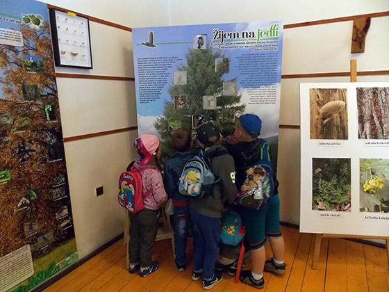 Interaktívna výstava Žijem na strome aje mi dobre je sprístupnená v skanzene vo Vychylovke